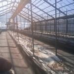 養液栽培施設撤去作業