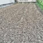 30 1 来年の茄子予定地に緑肥ライ麦を播種した。